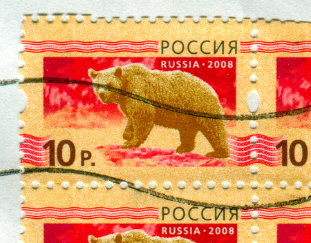 GOMEL, BELARUS, 13 OCTOBER 2017, Stamp printed in Russia shows image of the Bear, circa 2008. Editorial