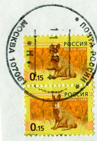 GOMEL, BELARUS, 13 OCTOBER 2017, Stamp printed in Russia shows image of the Hare, circa 2008. Editorial