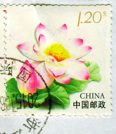 GOMEL, BELARUS, 27 OCTOBER 2017, Stamp printed in China shows image of the Flower, circa 2017.