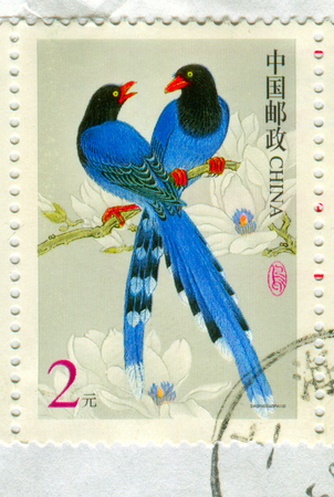 GOMEL, BELARUS, 27 OCTOBER 2017, Stamp printed in China shows image of the Taiwan blue magpie (Urocissa caerulea), also called the Taiwan magpie, Formosan blue magpie, or the long-tailed mountain lady, circa 2017.