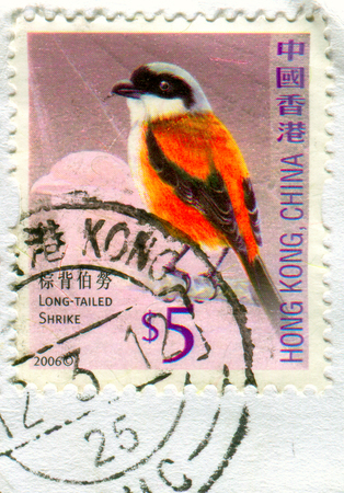 GOMEL, BELARUS, 19 NOVEMBER 2017, Stamp printed in HONG KONG, China shows image of the Long-Tailed Shrike, circa 2006. Editorial