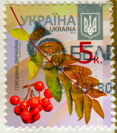 GOMEL, BELARUS, 20 NOVEMBER 2017, Stamp printed in Ukraine shows image of the Mountain ash, circa 2012.