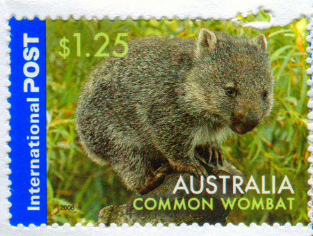 GOMEL, BELARUS, 5 DECEMBER 2017, Stamp printed in Australia shows image of the Common Wombat, circa 2006.