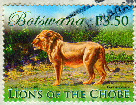 GOMEL, BELARUS, 5 DECEMBER 2017, Stamp printed in Botswana shows image of the Lions of the Chobe, circa 2014. Editorial