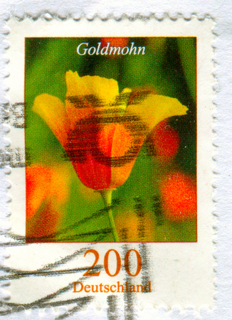 GOMEL, BELARUS, 15 DECEMBER 2017, Stamp printed in Germany shows image of the Goldmohn, circa 2017.