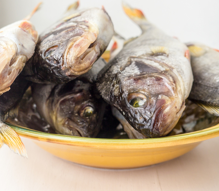 The Dried Fish objects. Stock Photo