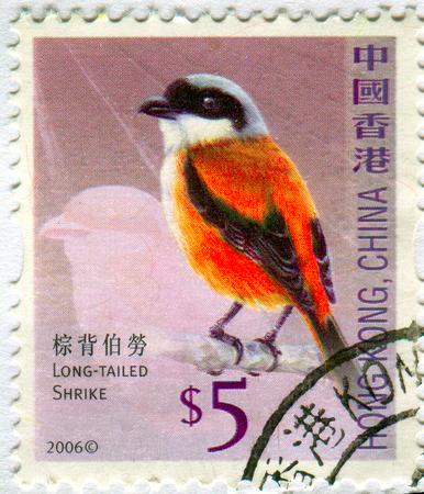 GOMEL, BELARUS, 19 NOVEMBER 2017, Stamp printed in HONG KONG, China shows image of the Long-tailed Shrike, circa 2006.