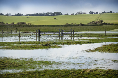 flooded: Flooded fields Stock Photo