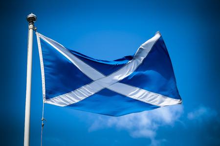 the jacobite: Scottish flag