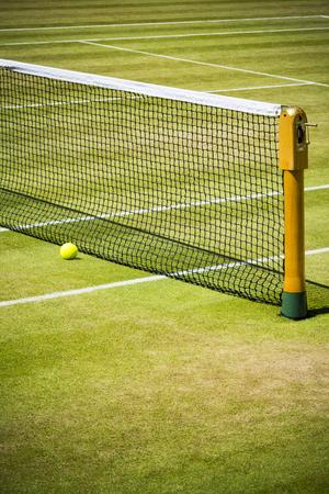 Tennis net and ball on grass court