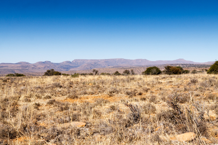 Mountain Zebra National Park is a national park in the Eastern Cape province of South Africa proclaimed in July 1937 for the purpose of providing a nature reserve for the endangered Cape mountain zebra. Stock Photo