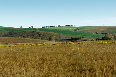 Green Grass Landscape - South Africas geography. South Africa occupies the southern tip of Africa, its long coastline stretching more than 2 500km from the desert border with Namibia on the Atlantic coast, southwards around the tip of Africa, then north
