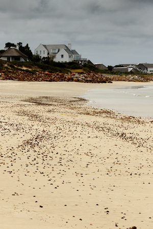 Seashells on the sand with a house in the back ground in Port St Francis