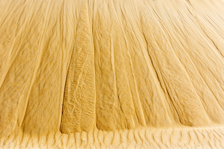 Close up of the sand dune at the beach. Stock Photo