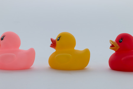 rubber duck: Rubber ducks in different colors in one row, yellow, pink and red Stock Photo