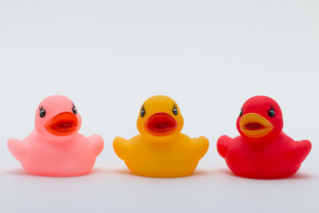 rubber duck: Three rubber ducks in different colors facing the viewer Stock Photo