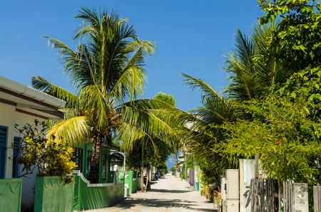 The central street of the Huraa island with one-story houses and tall palm trees overlooking the Indian Ocean, Maldives