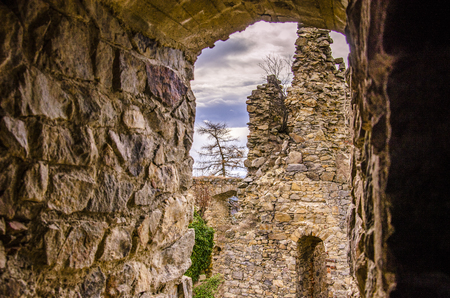 Ruins of old castle in European nature