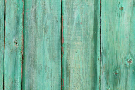 Green painted wood planks as background or texture.