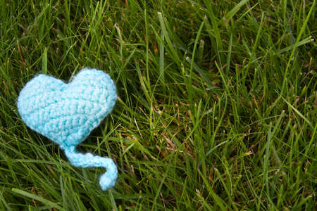 Blue knitted heart lying on green grass background