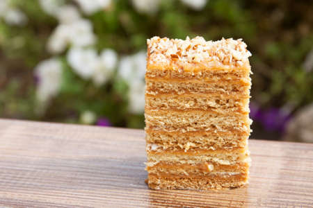 A piece of cake outdoors. Background from flowers. Close-up. Selective focus. 版權商用圖片