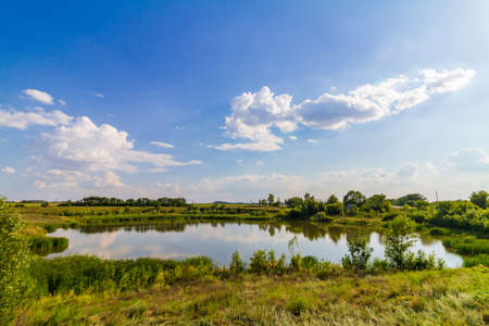 Small pond with green plants and clouds on the blue sky