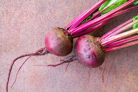 Fresh organic beet, beetroot on the rusty metal background. Closeup, selective focus