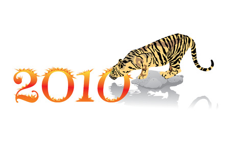 xm: 2010 Year of Tiger, background for greeting card, vector Illustration, see more at my portfolio Illustration
