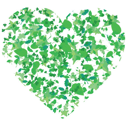 verdure: Heart, created from leaves of different trees, vector illustration