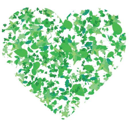 utworzonych: Serce, utworzone z liści różnych drzew, ilustracji wektorowych