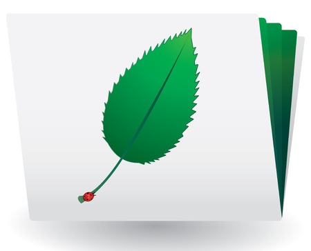 greenpeace: Catalog with green leaf and ladybird on top, vector Illustration