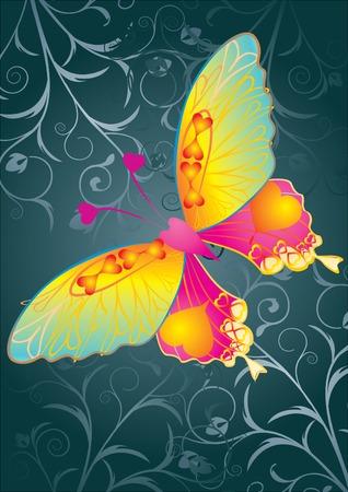 i love u: Love butterfly on grey background, illustration Illustration