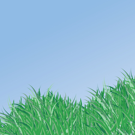 Spring vector background with green grass Stock Vector - 6448985