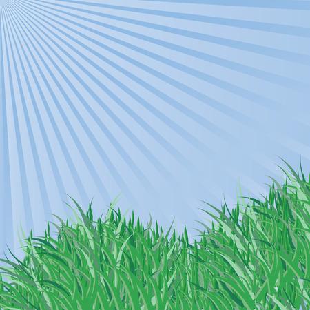 Spring grass under blue sky,  vector background Stock Vector - 6449011