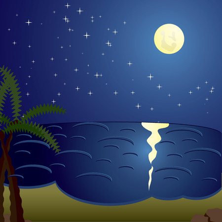 Vacation cards, night at the sea, vector illustration Vector