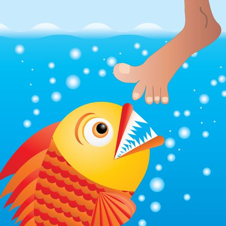 Cartoon piranha trying to bite the leg, vector illustration illustration