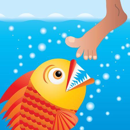 Cartoon piranha trying to bite the leg, vector illustration