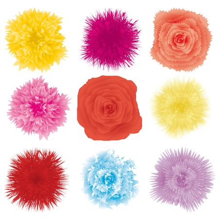 Set of flower design element, part 2, vector illustration Vector