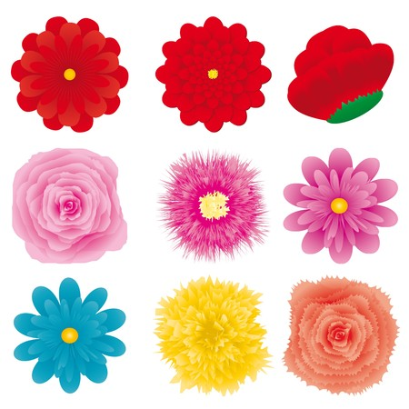 orange gerbera: Set of flower design element