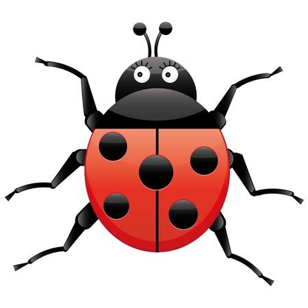 Funny ladybug, looking left, cartoon character, isolated on white background, vector illustration Illustration