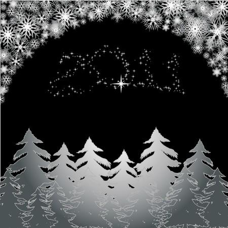 Christmas night 2011, vector illustration Vector
