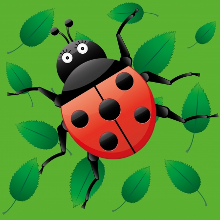 Funny ladybug, looking on me, cartoon character on green seamless background with leaves, vector illustration Vector