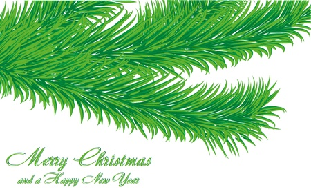Christmas greetings card with fir tree branch isolated on white and a wish of Merry Christmas and a Happy New Year, vector illustration Vector
