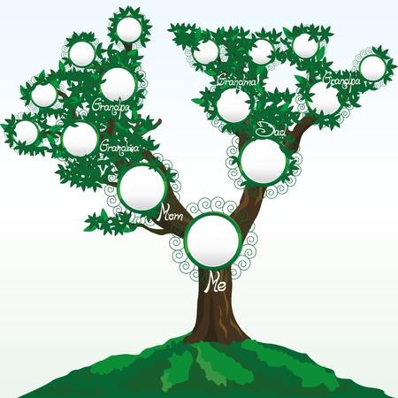 arbol geneal�gico: �rbol de familia con fotos o nombres