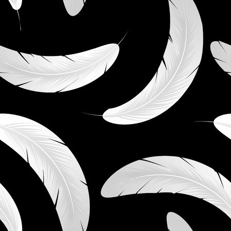 Seamless pattern with white feathers on black background Stock Vector - 10059510