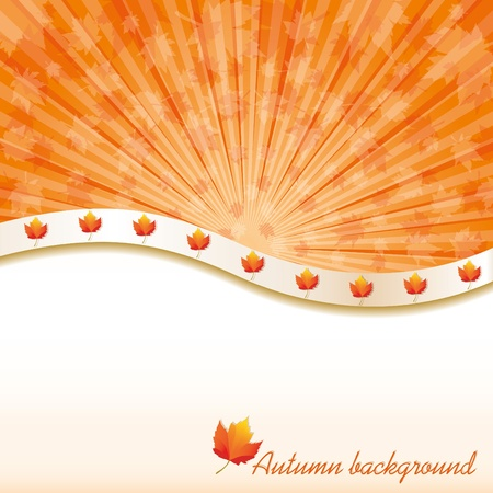 Autumn background with maple leaves, vector illustration Vector