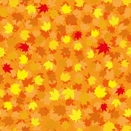Autumn seamless background with maple leaves, vector illustration Stock Vector - 10121417