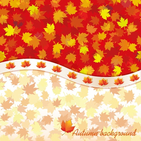 Autumn background with maple leaves. Vector