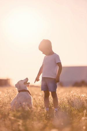 sit down: Child Training Dog Puppt to Sit Down at Meadows Stock Photo