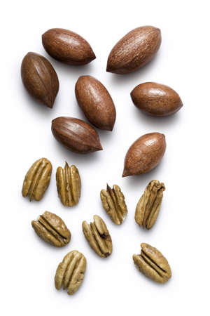 whole pecans: Pecans shown shelled and in their shells on a white background